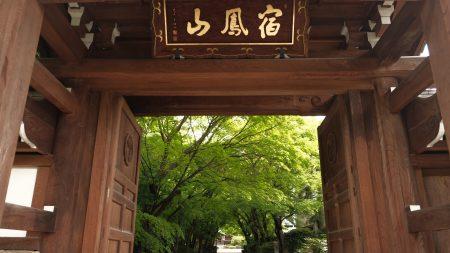 宿鳳山 高円寺